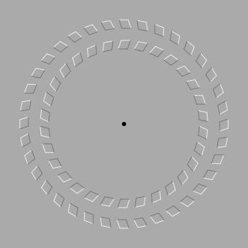 illusionrevolvingcircles